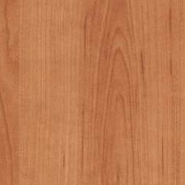 вишня степная фото