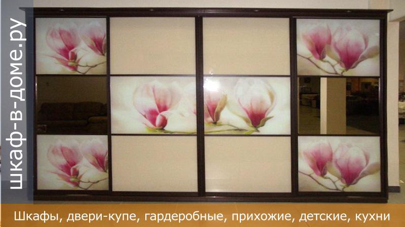 Двери купе с фотопечатью на стекле.